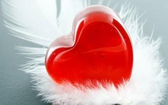 Пока в душе живёт любовь