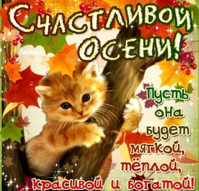 Счастливой осени друзья!!!