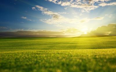 Жизнь пройти - не поле перейти