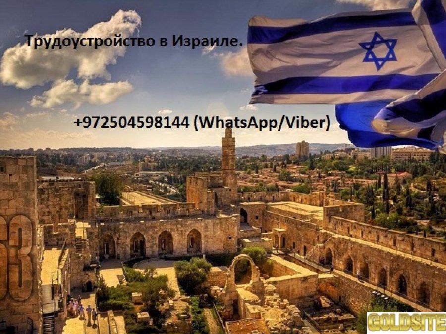 Работа в Израиле.  Мы не берем предоплату!