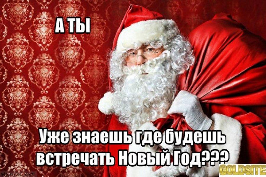 Новый Год под Киевом в Пуще Водице