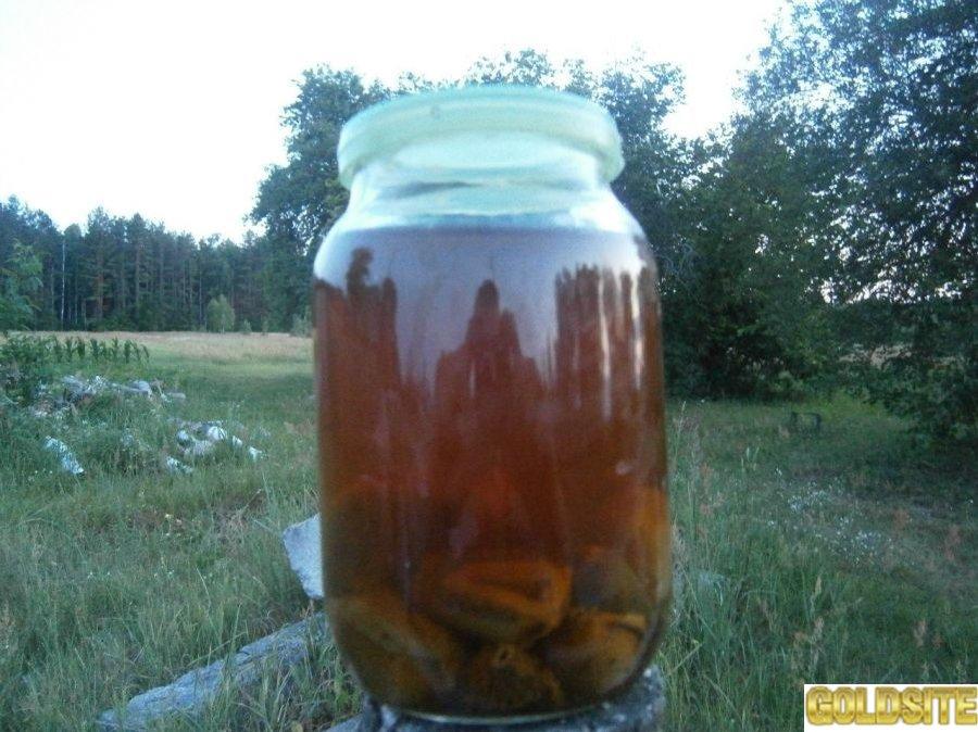 Настойка гриба Веселка в 1, 2, 3 л банках