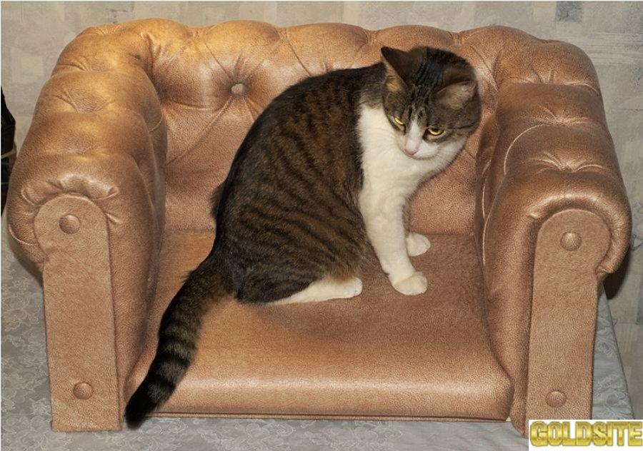 Goldsite Интерьерный диван Chester для животных