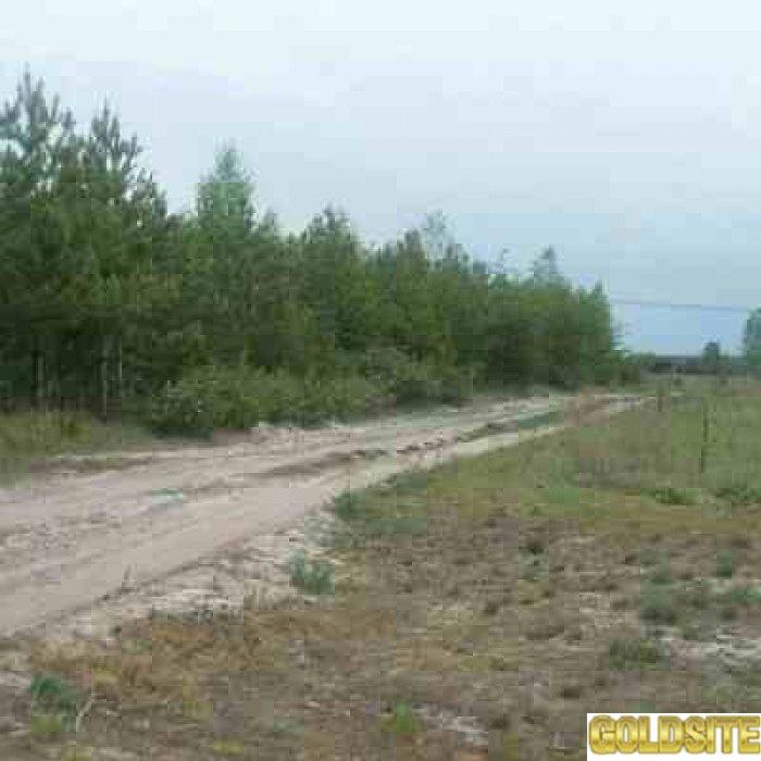Бондарня.   Приватизированный  участок 25 соток п/ ж.  д.  ,  на окраине поселка,   возле леса