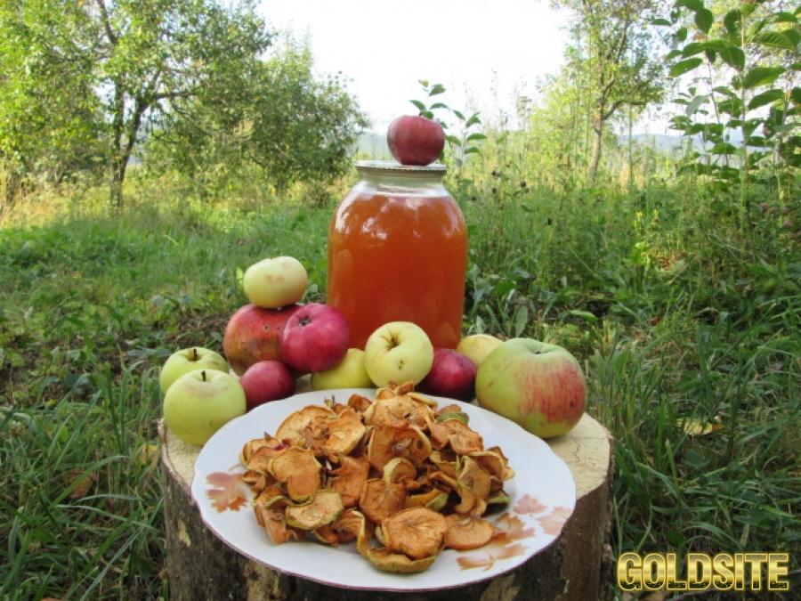 Яблоки сухие сухофрукты сушка домашняя натур эко без термо.