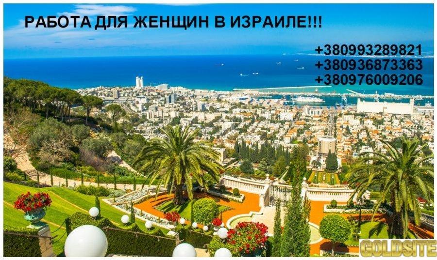 РАБОТА ДЛЯ ЖЕНЩИН В ИЗРАИЛЕ! ! !
